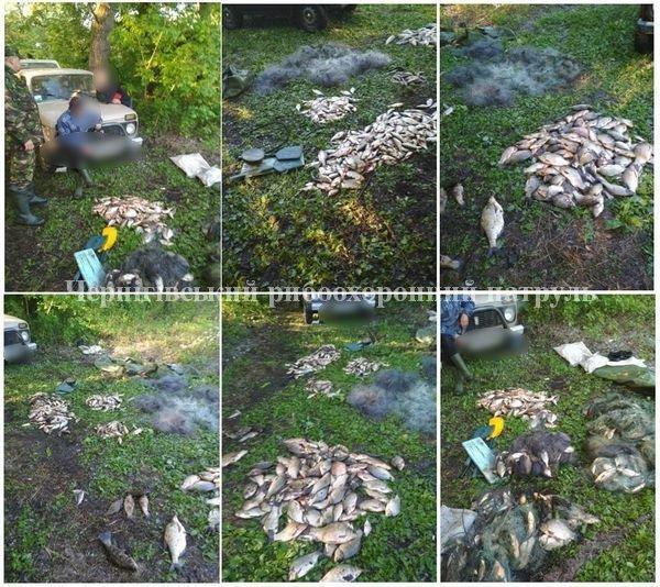 Протягом двох днів вилучено 95 кг незаконно добутої риби зі збитками 37,9 тис. грн, - Чернігівський рибоохоронний патруль